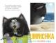 Котёнок Шмяк и морские истории 1