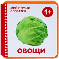 Мой первый словарик.  Овощи (EVA) New