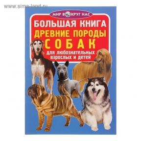 Большая книга