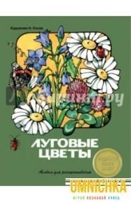 АЛЬБОМ ДЛЯ РАСКРАШИВАНИЯ. Луговые цветы